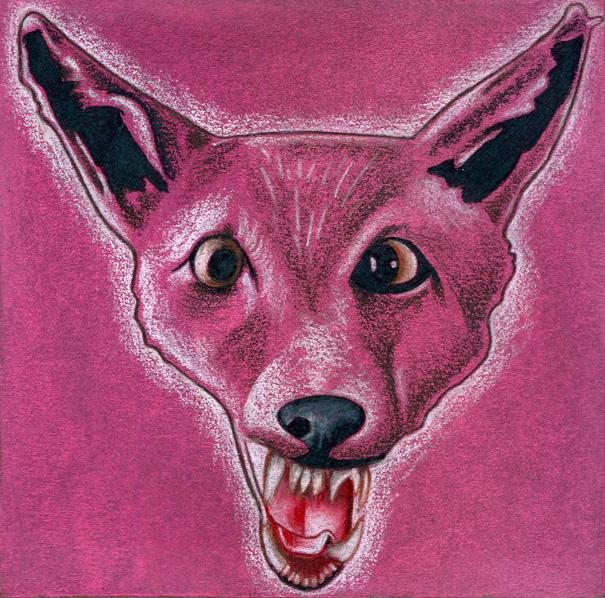 Fox#2WEB